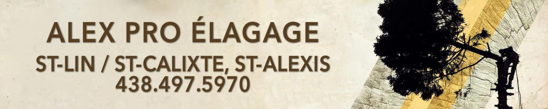 Alex Pro Élagage